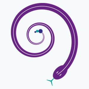 Espirales, circunferencias, rombos, polígonos.